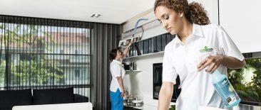 House Shine, Serviços Limpezas Domésticas, Como Funciona