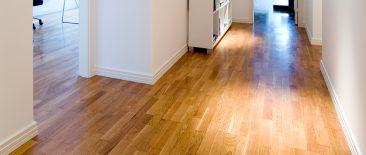 Pavimento de madeira Limpo pela House Shine