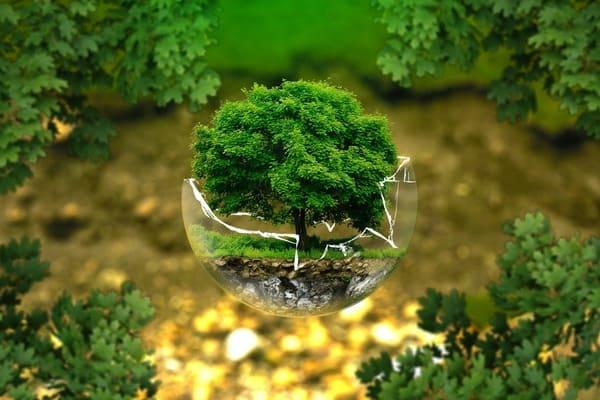 Limpeza ecológica. House Shine