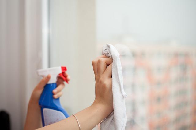 Empregada doméstica. Quais as obrigações do empregador
